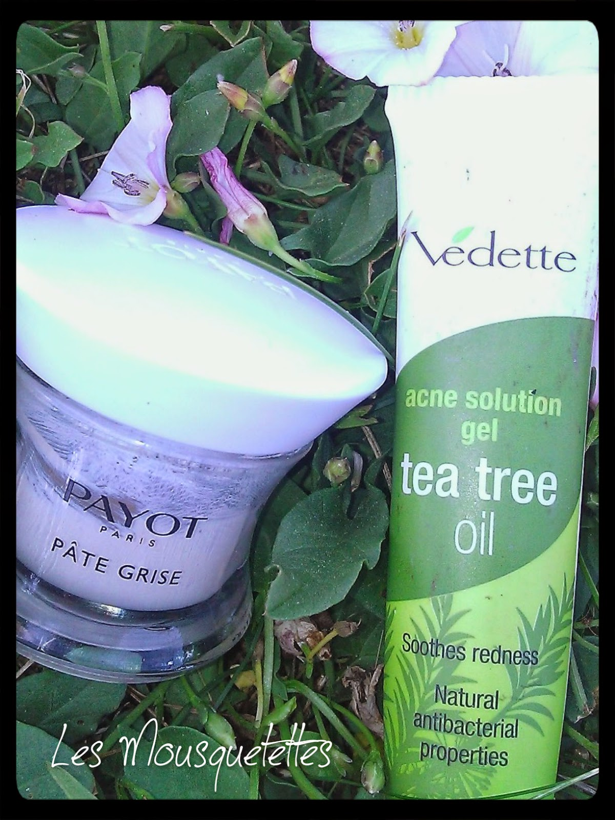 Pâte Grise Payot VS Tea Tree Oil Vedette - Les Mousquetettes©