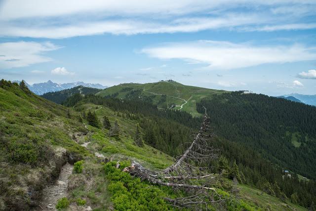 Der Pinzgauer Spaziergang  Die Saalbach Wander-Challenge 12