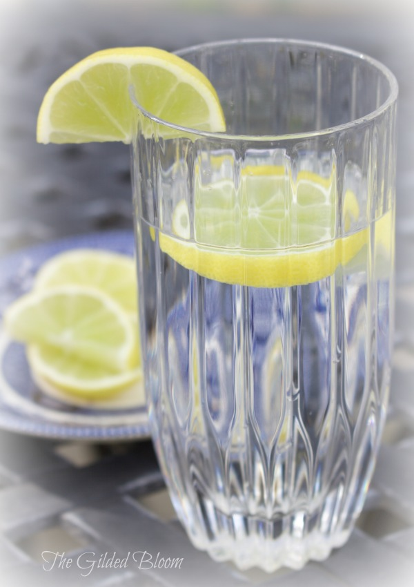 Lime Water- Harvesting the Winter Garden- www.gildedbloom.com #gardening