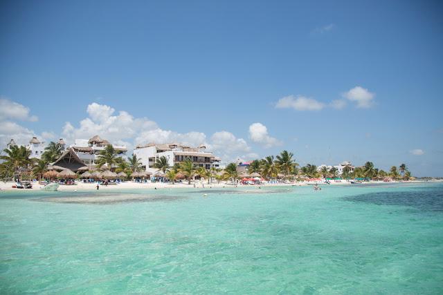 Arrecifes Majahual Quintana Roo