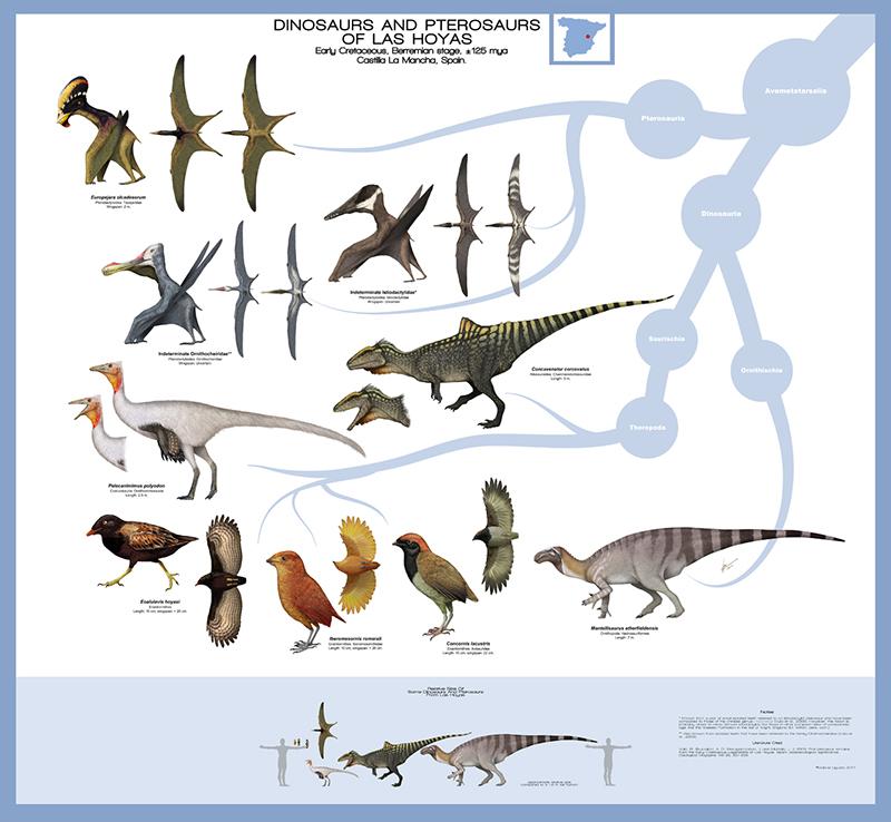 Gabriel Ugueto's Las Hoyas Formation Poster