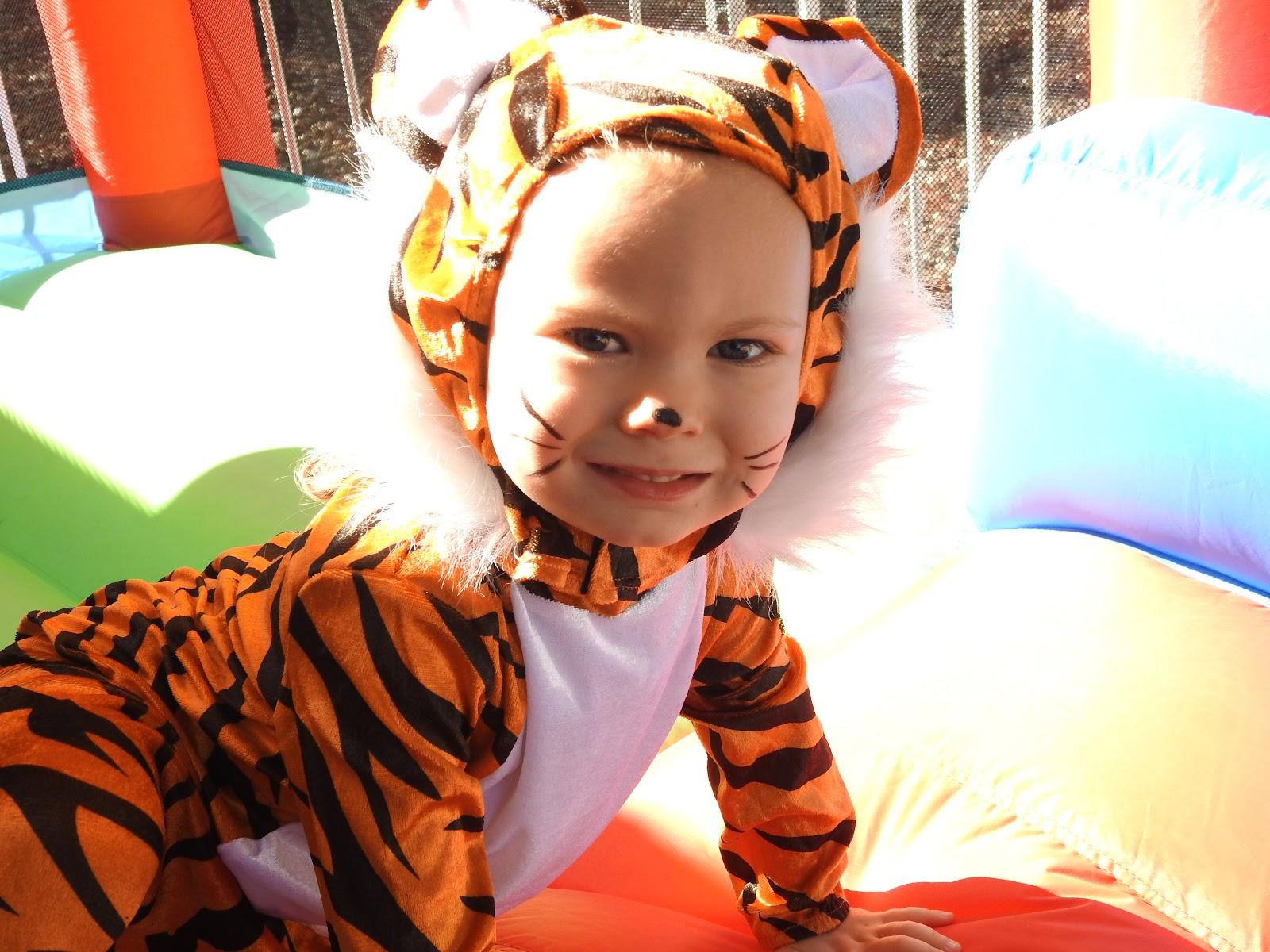 halloween tiger custome
