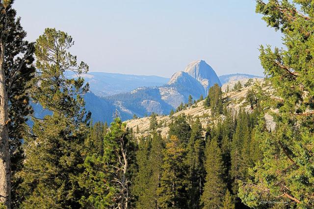 Yosemite National Park geology travel field trip Tioga copyright rocdoctravel.com