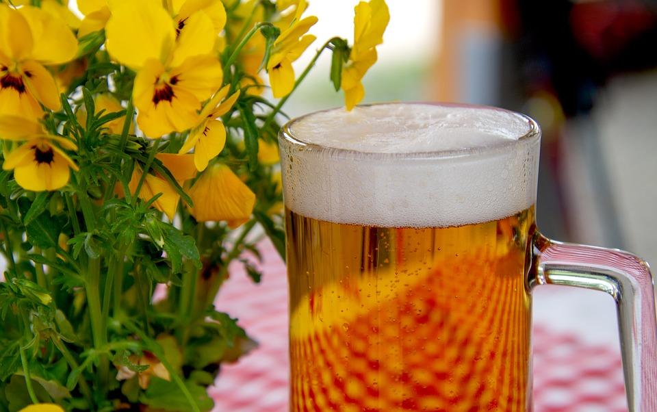 cervejas importadas-cerveja artesanal-comprar cerveja-cerveja serramalte-cerveja em lata-cerveja light-cerveja-garrafa cerveja
