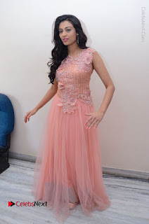Actress Neha Hinge Stills in Pink Long Dress at Srivalli Teaser Launch  0144.JPG