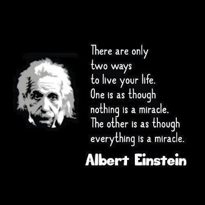 Excellence Quotes By Albert Einstein