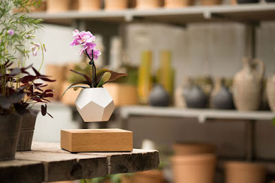ابتكار وعاء طائر للنباتات والزهور