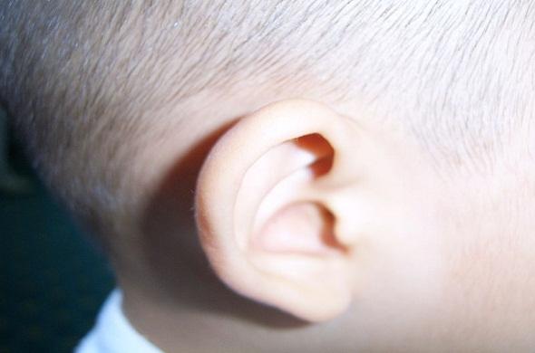 ear-and-hearing-sense-definition-تعريف-الاذن-و-حاسة-السمع