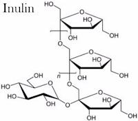 Kandungan WMP Inulin