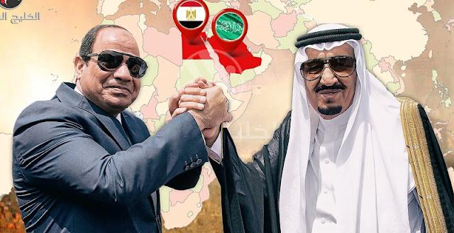 زيارة وفد من الأسرة الحاكمة السعودية لمصر, أسباب و تفاصيل