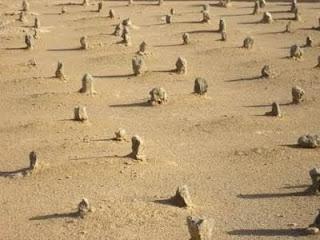 larangan membangun masjid diatas kuburan