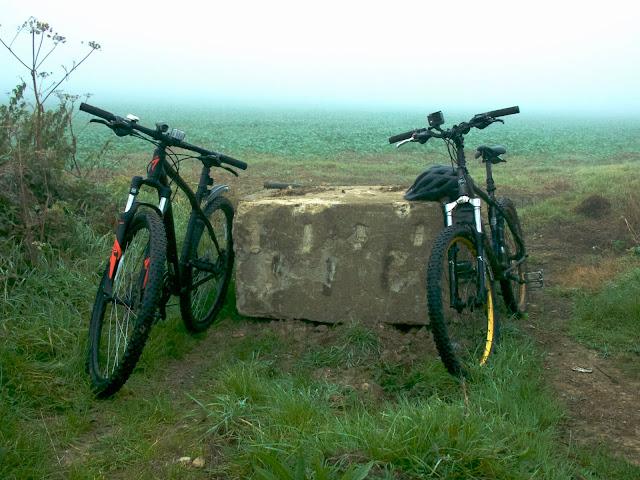 cycling mist field