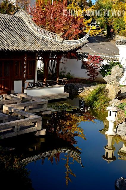 Reflejos en el jardín Chino