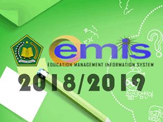 Aturan Baru Pemutakhiran Data EMIS Semester Ganjil Tahun Pelajaran 2018/2019