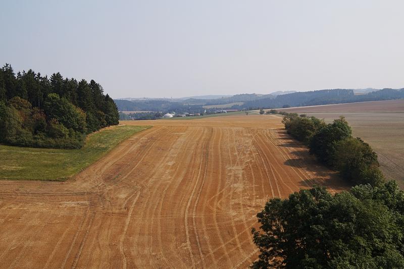Ausblick vom Saaleturm: Thüringer Landschaft