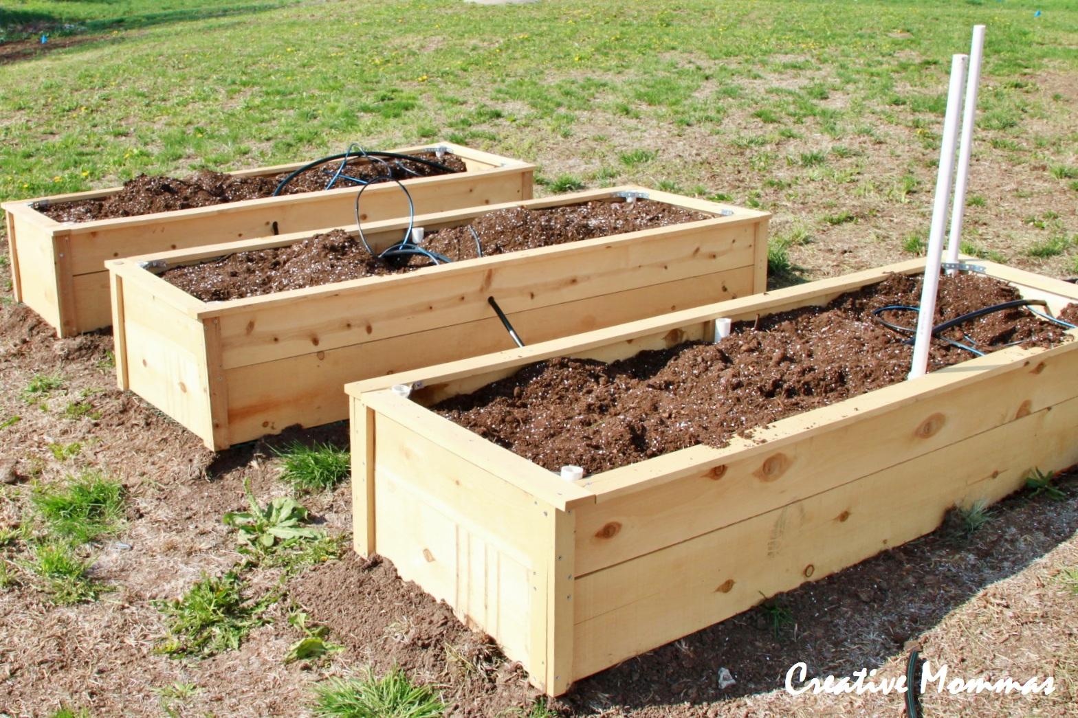 Creative Mommas: Raised Garden Beds
