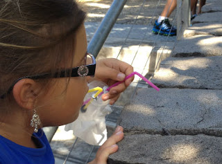 Percobaan Membuat Penangkap Serangga Sederhana