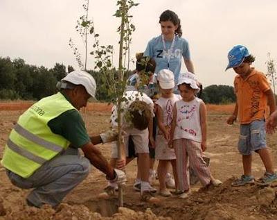 Foto de personas plantando un arbolito