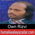 https://www.humaliwalyazadar.com/2019/03/own-rizvi-manqabat-2019.html