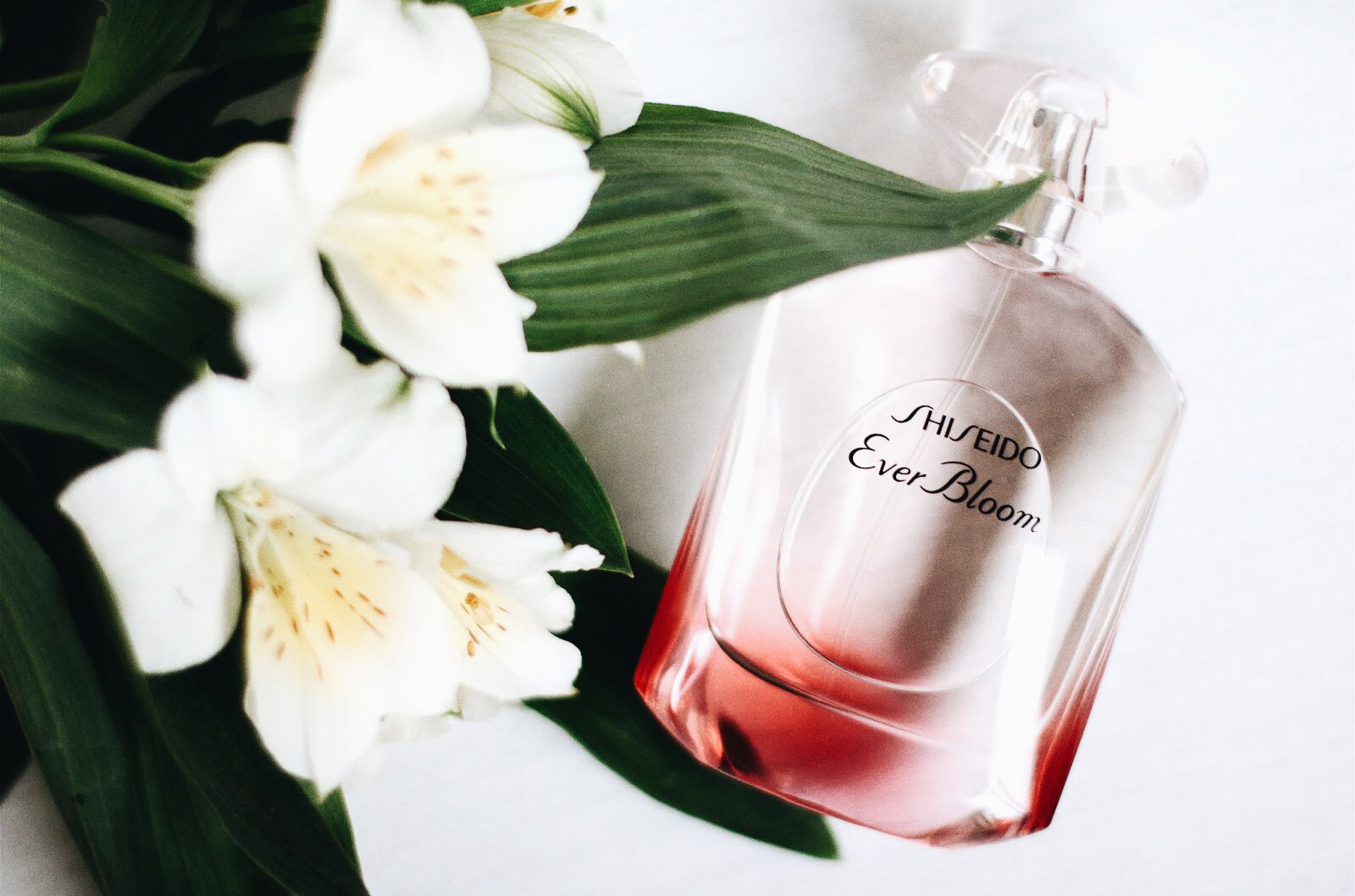 shiseido ever bloom parfum avis test