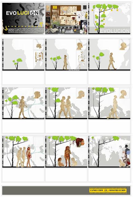 Australopithecus afarensis.,Ergaster, Erectus, Antecessor, Heildelbergensis, Neandethalensis , Sapiens, secuenciados