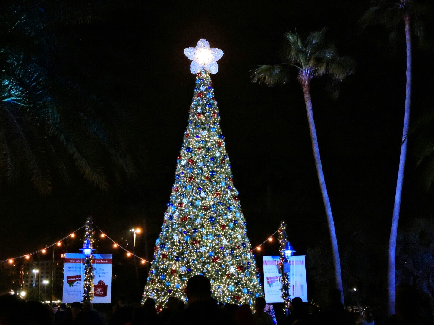 Florida Fun for the New Years!  #FamilyTravel via www.productreviewmom.com