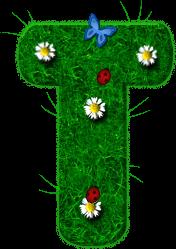 Alfabeto con Césped, Margaritas, Mariquita y Mariposa.