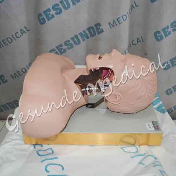 jual manekin intubasi