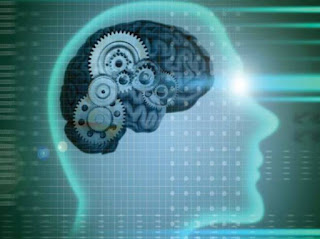 главный инструмент при сдаче экзаменов - это все же мозги