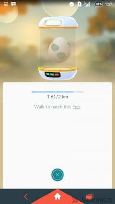 Cara Cepat Naik Level Pokemon Go , menetaskan telur