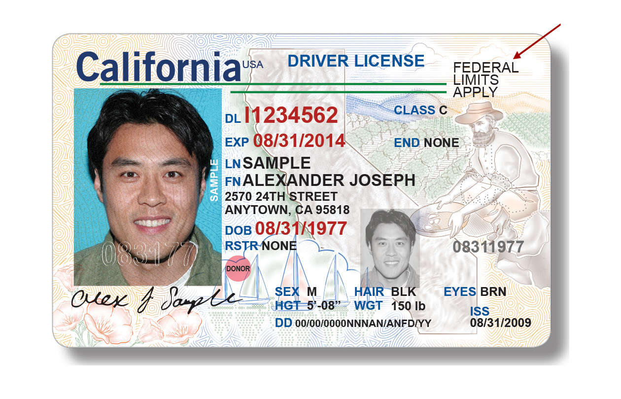 How to Get a California Driver's License