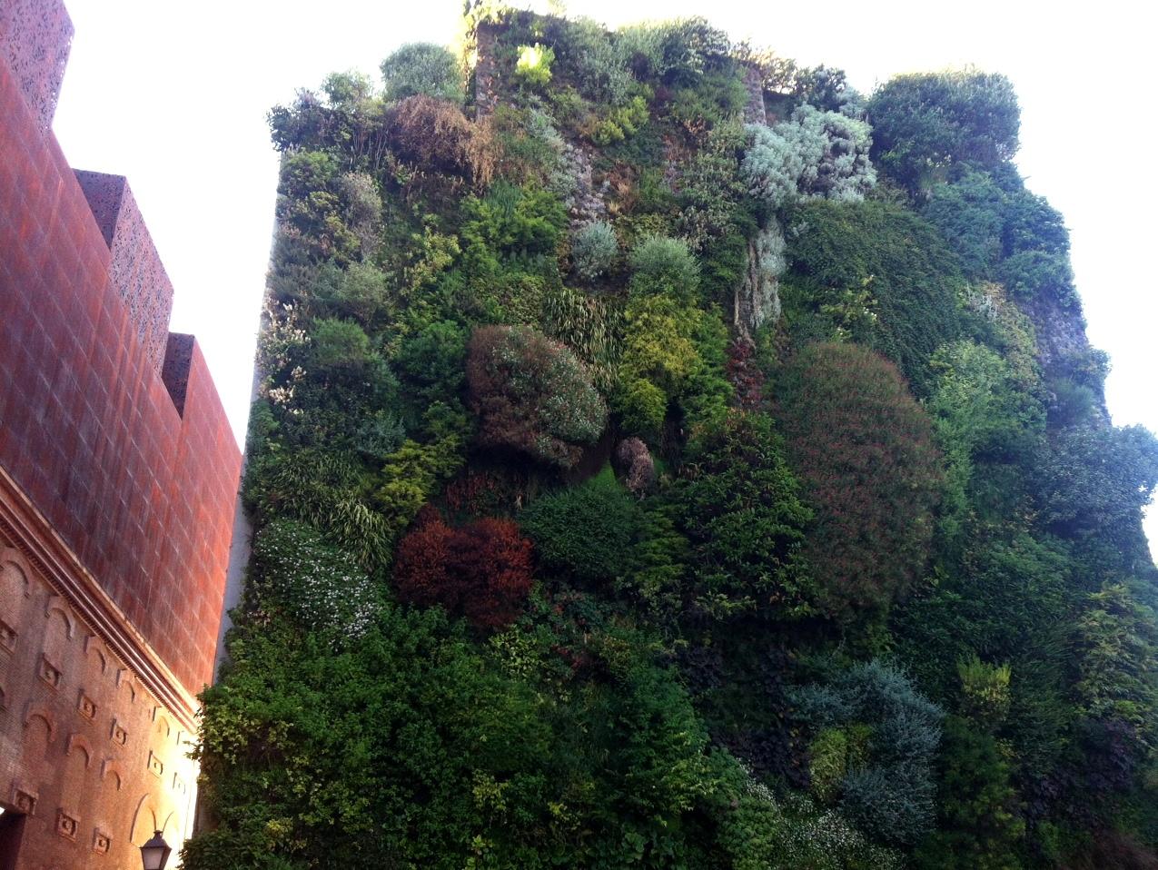 Pasi n por madrid jardines verticales madrile os for Jardines verticales artificiales madrid