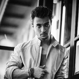 aayush sharma instagram, anil sharma, arpita khan, love story, wiki, house, businessman, family, arpita khan husband, biography, facebook