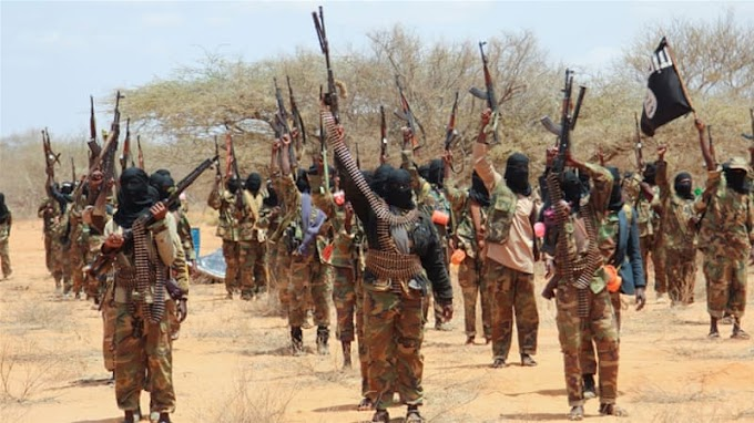 Several dead as al-Shabab storms Somali border town