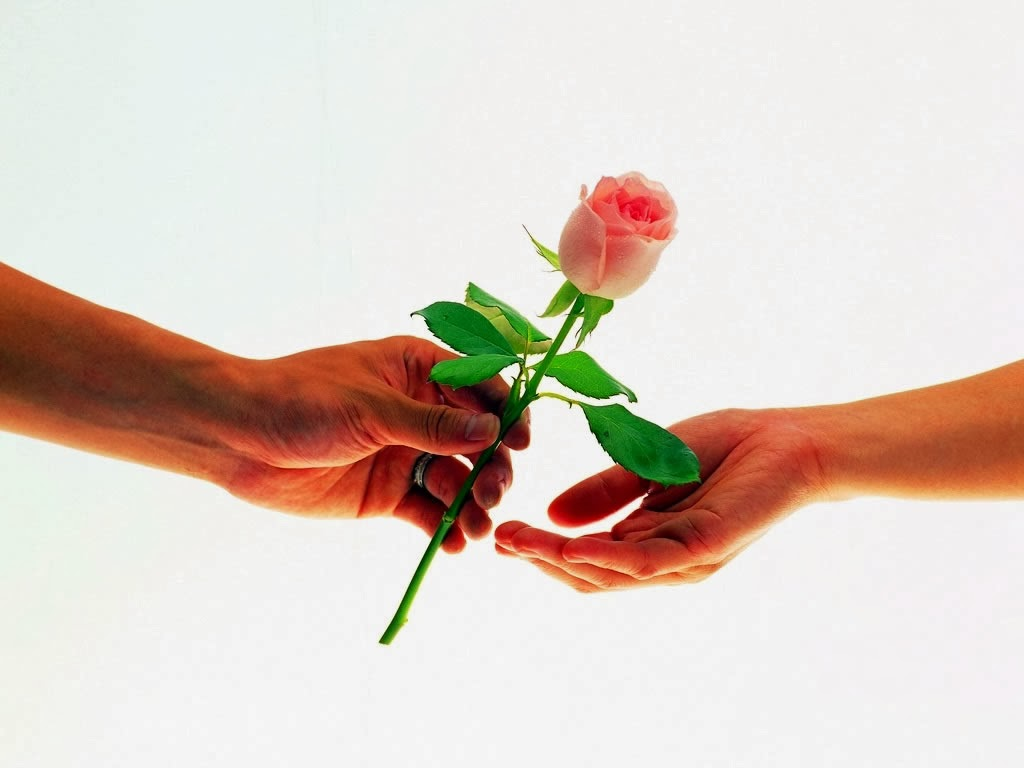 rose day pictures pics