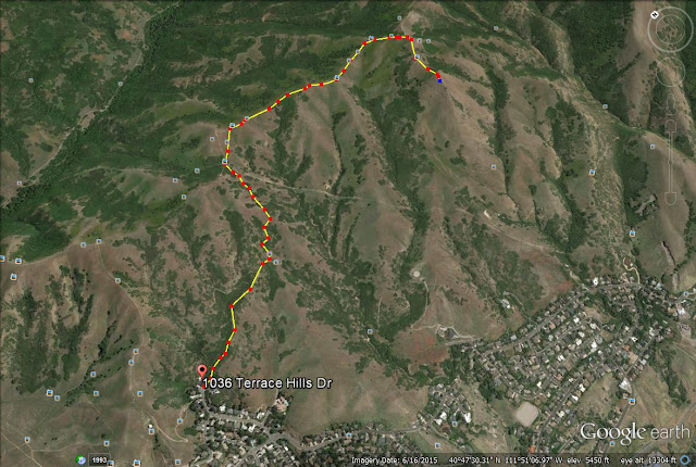 Hiking the Avenues Twin Peaks, Utah, Hiking in Utah with Dogs