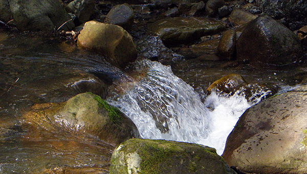 Tiny falls as water rushes over rocks