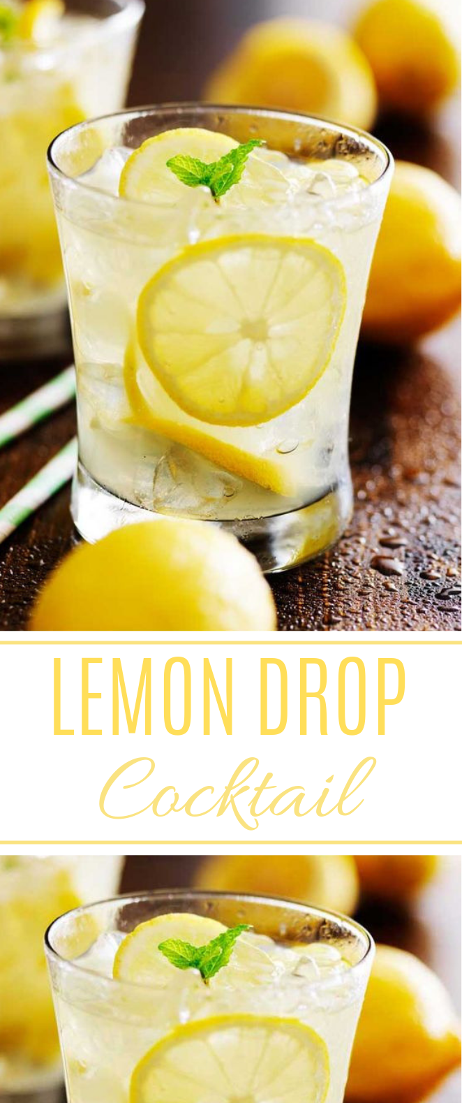 Lemon Drop Cocktail #summer #drinks