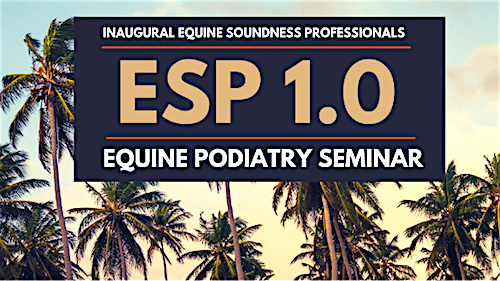 inaugural seminar of Equine Soundness Professionals