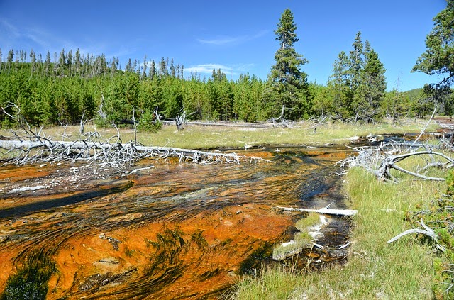 Top 10 US Places to Go For Summer Vacation (Summer Blog Series)- Yellowstone via ProductReviewMom.com