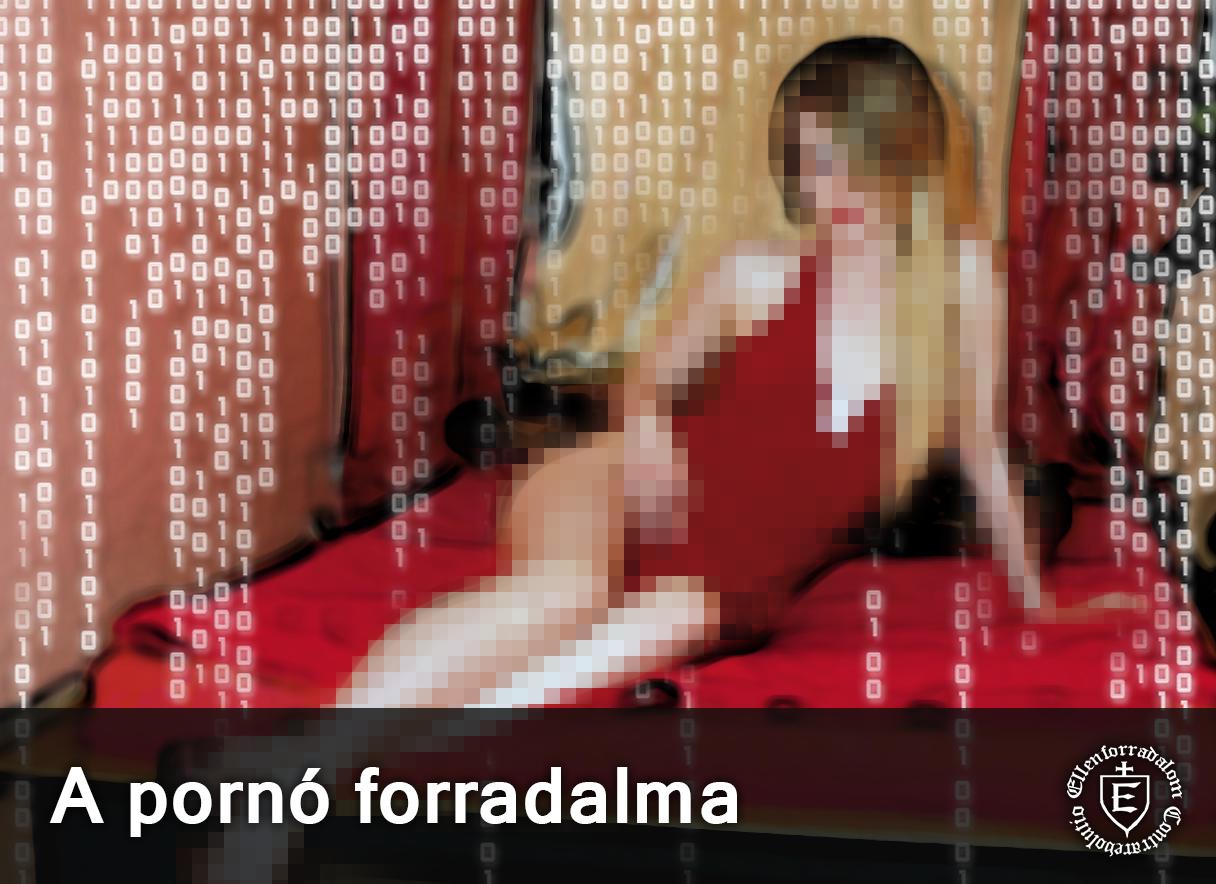 http://ellenforradalmar.blogspot.hu/2016/12/a-porno-forradalma.html#more