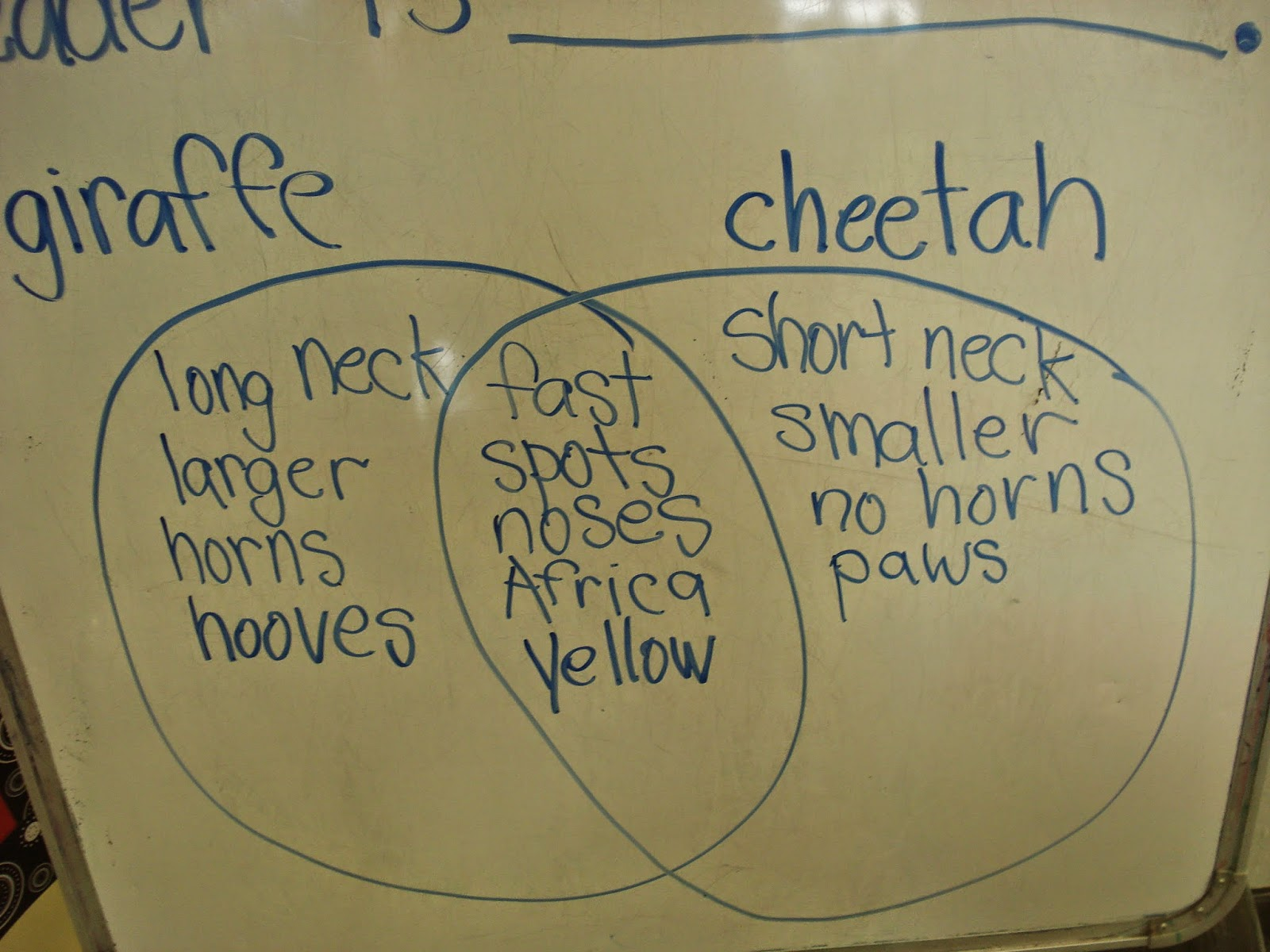 pre k 1 choose one animal to research in depth about we have been learning about researching and we wanted to continue to put our new knowledge to use  [ 1600 x 1200 Pixel ]