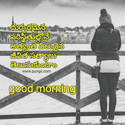 fresh telugu good morning quotes with beautiful images free HD wall papers