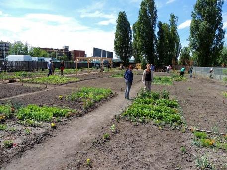Pénteken itt a Közösségi kertek éjszakája - Ferencvárosban is