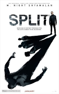 Split 2016 English 480p HC HDRip 300MB