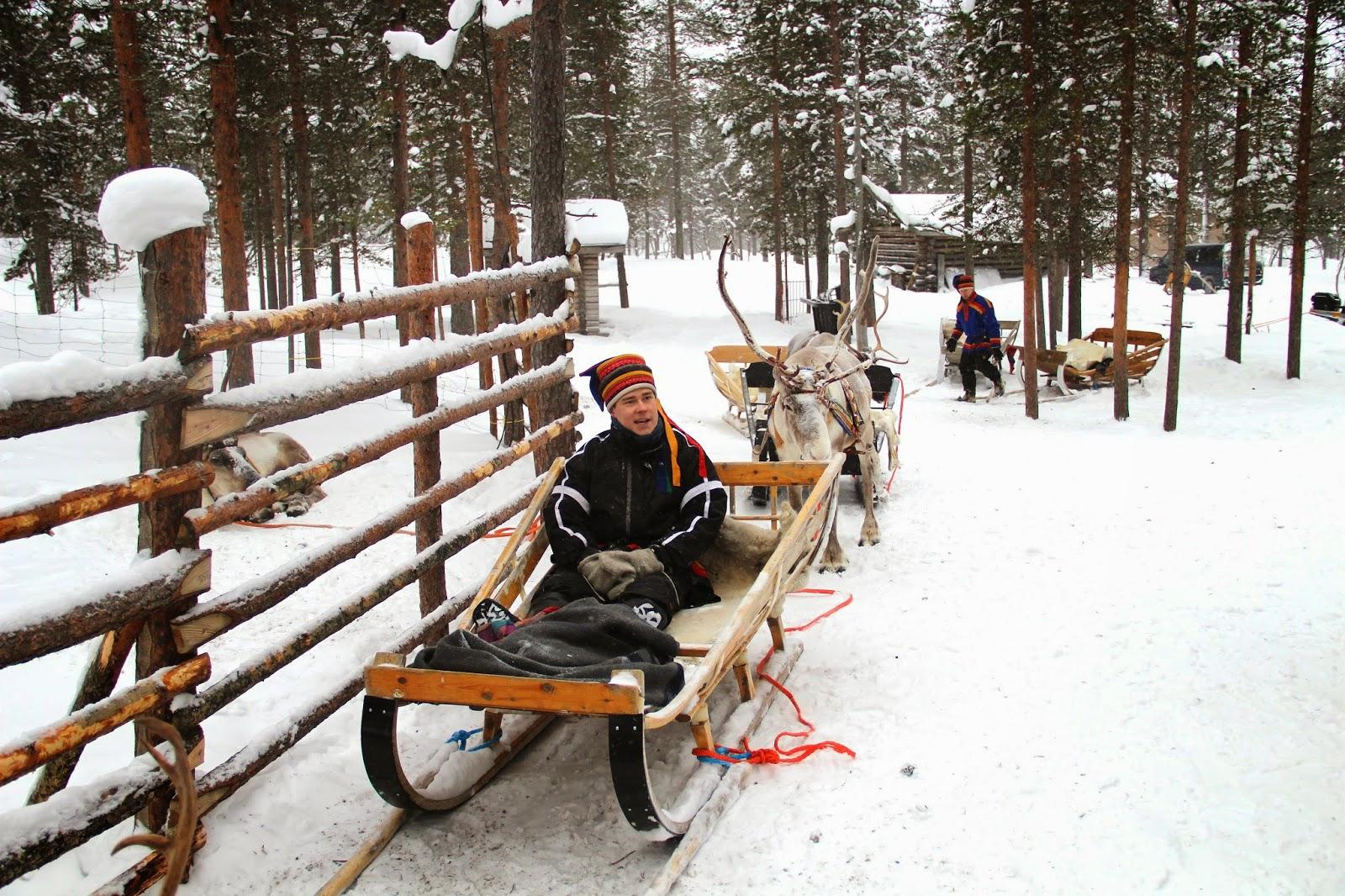 Sami Reindeer Herder Finland