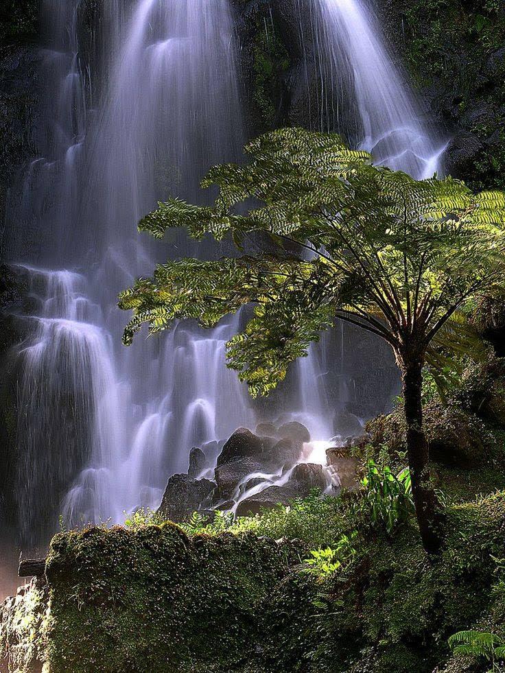 Poço da Alagoinha (Açores)