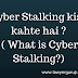 Cyber Stalking kise kahte hai ? ( What is Cyber Stalking?)