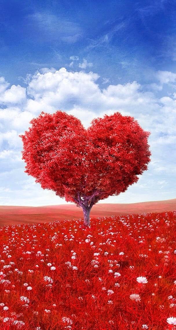 Ada Apa dengan Cinta