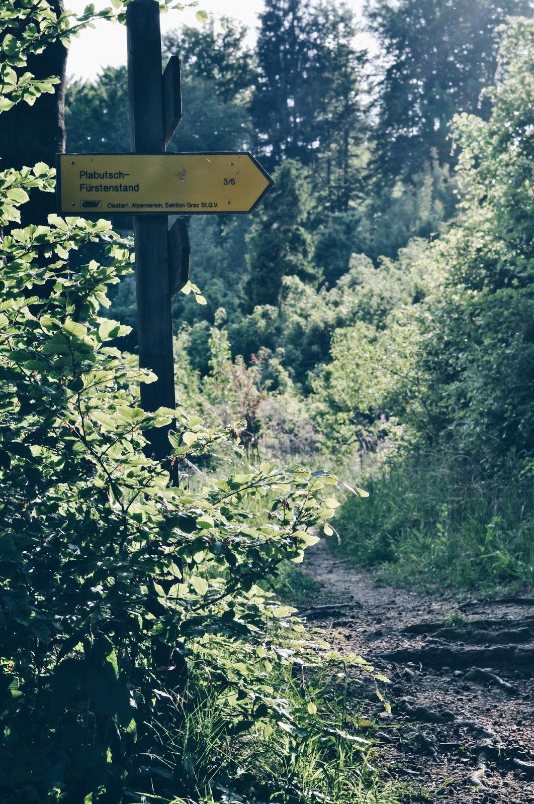 Obowiązkowy punkt do zobaczenia w Graz - góra Plabutsch